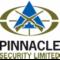 Pinnacle Security Limited